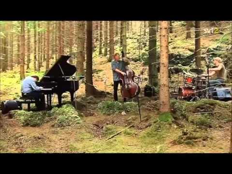 Bobo Stenson Trio - Don's Coralåt (2009)