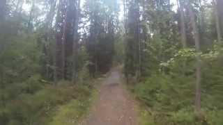 Riding i Hvitebjørn gård og svartskog med Stjarni