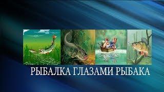 Рыбалка+рыба+ловля+судак+лещ+щука+окунь+плотва+густера+карась+фидер+подпуск+кружки+удочка+отдых