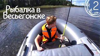 Рыбалка в Весьегонске 9 дн Ловля щуки окуня судака на спиннинг Плотва на фидер Дары леса День 2