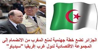 الجزائر تكيد المكائد للحيلولة دون انضمام المغرب إلى المجموعة الاقتصادية لدول غرب إفريقيا