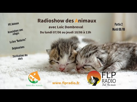 Interview Loic Dombreval Partie 2 - FLP Radio