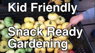 Planning a Kid Friendly Snack Ready Garden