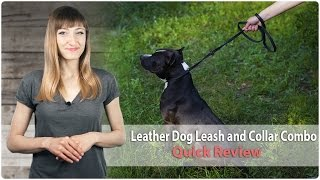 Fast Handling Leather Leash And Collar Combination For Walking And Training- Quick Review