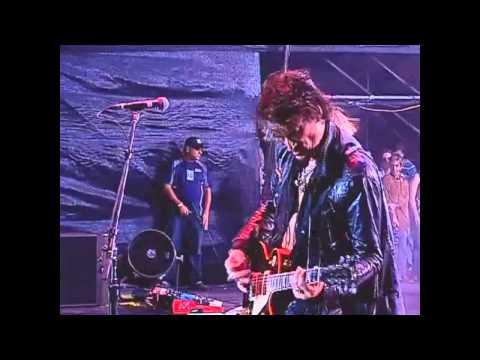 Aerosmith Falling In Love Costa Rica 2010 - PRO SHOT