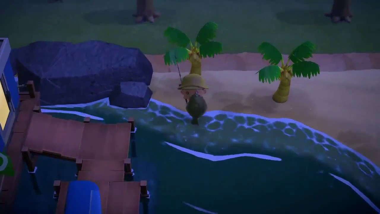 How To Catch An Olive Flounder In Animal Crossing New Horizons Youtube Every so often, your animal crossing: how to catch an olive flounder in animal crossing new horizons