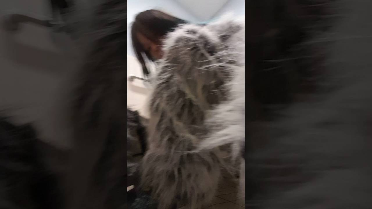 Wolf mascot suit up [100 like for more] & Wolf mascot suit up [100 like for more] - YouTube