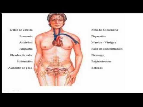 Fisiologia Femenina Antes Del Embarazo Y Hormonas Femeninas (capitulo 81 Guyton Y Hall)