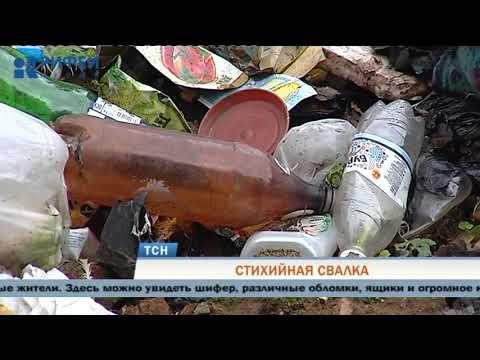 Лес в Орджоникидзевском районе Перми превратился в огромную свалку