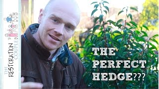 The Ultimate Hedge?