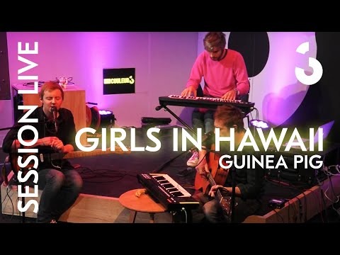 Session Live - Girls in Hawaii - Guinea Pig