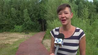 Reportage: Kunstenaars sluiten zich op in tiny-home (TV Enschede)