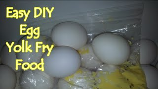 Easy DIY Egg Yolk Fry Food