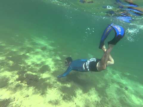 Underwater Snorkeling Video Indian Ocean Coast of Oman Sep 2013 1 of 4