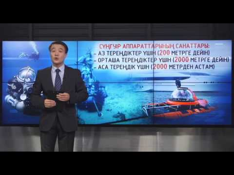 «Толық мәлімет». Ұшақ қалдықтарын іздеуде Bluefin-21 автономды сүңгуір аппараты қолданылады