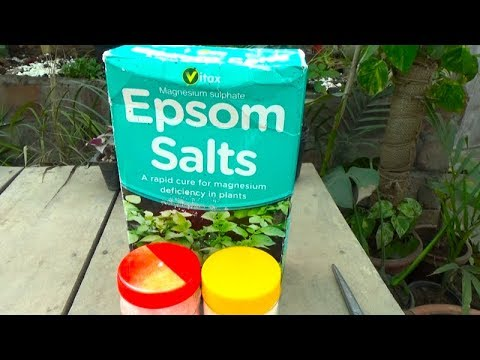 732# What Is Epsom Salt | What Is Magnesium Sulfate | In Depth Information