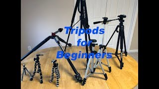 TriPod Review for Beginners