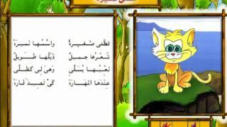 أناشيد أطفال: قـطـتي نميرة