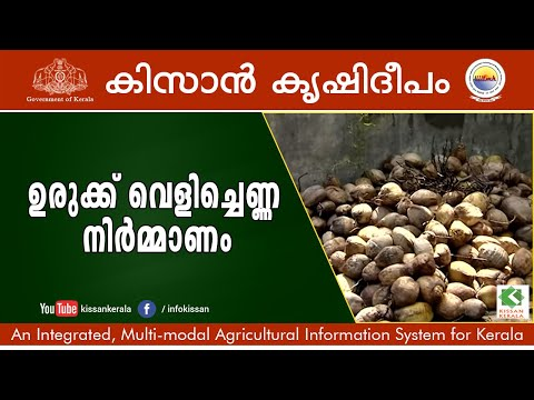 Virgin coconut oil preparation, Kannur