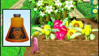 Plant Experiment with Fertilisers - VIRTUAL TOWN GIANT FLOWERS
