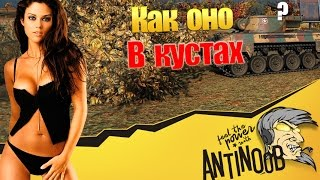 ЧИТЕР! КРЫСА ИЗ КУСТОВ в World of Tanks (wot)