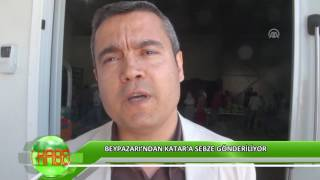 Beypazarı'ndan Katar'a sebze gönderiliyor