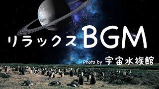【マイナスイオンBGM】森とピアノ ヒーリングミュージック 森林浴 ヨガ・瞑想・安眠・ストレス解消・癒し