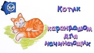 Как нарисовать кошку -- Рисунок карандашом Для Начинающих