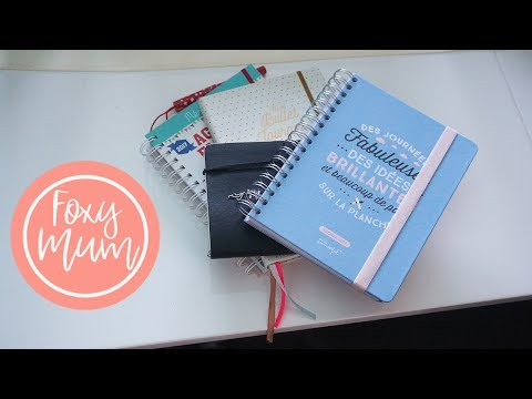 Mes carnets - Bullet Journal & TodoList & Planers