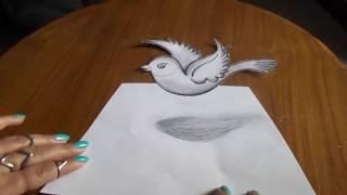 bird easy 3d draw beginners tutorials