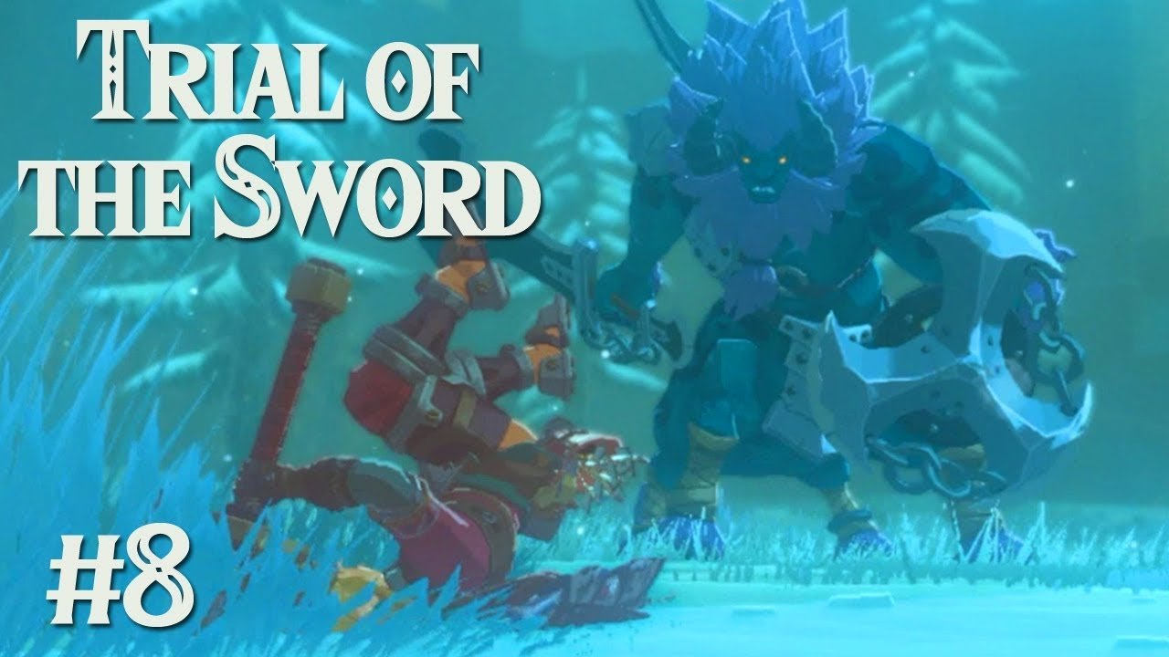 Duelling With Fate Zelda Botw Trial Of The Sword 8