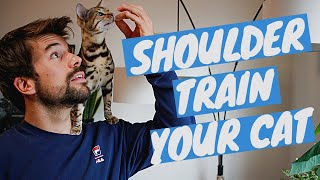 How to TRAIN A CAT TO SIT ON YOUR SHOULDER using clicker training