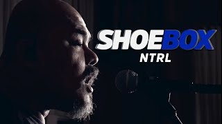 NTRL Live at Shoebox Sessions | Shoebox #15