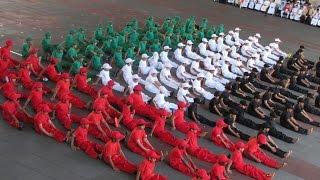 Flag Day 2014  يوم العلم الإماراتي