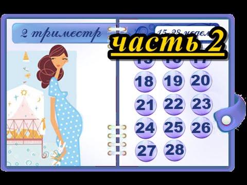 ВТОРОЙ ТРИМЕСТР БЕРЕМЕННОСТИ, ЧАСТЬ 2 / ТОНУС МАТКИ / ЛИЧНЫЙ ОПЫТ
