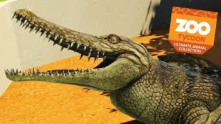 New outback exhibit filled with 'roos (ehehe) but LOOK CROCODILES S...