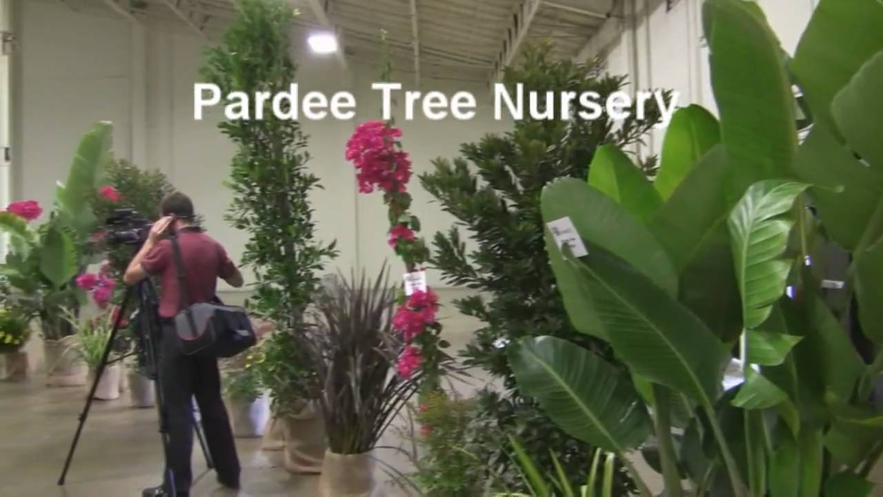 Pardee Tree Nursery Donated Plants To The San Go Business Showcase