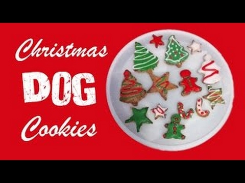 How To Make Christmas Dog Cookies Xmas Festive Frosted Treats Diy