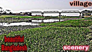 Beautiful scenery of Bangladesh village Bangladesh village . Amazing scenary.