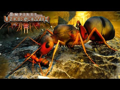 Download Youtube: Ant Colony Simulator! - Empires of the Undergrowth BETA Gameplay | Ep1