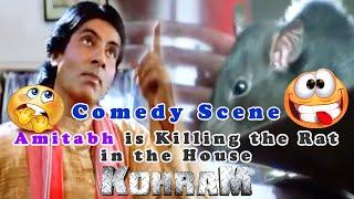 Amitabh is Killing the Rat in the House Comedy Scene | Kohram Movie