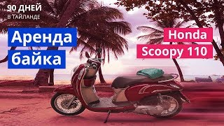 Аренда байка Пхукет. Honda Scoopy 110 / Хонда Скупи 110