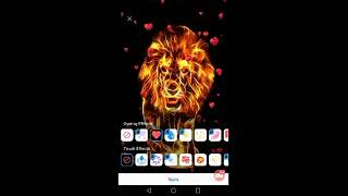 Watch me stream Fire Wallpaper and Keyboard - Fire Lion on Omlet Arcade! screenshot 4