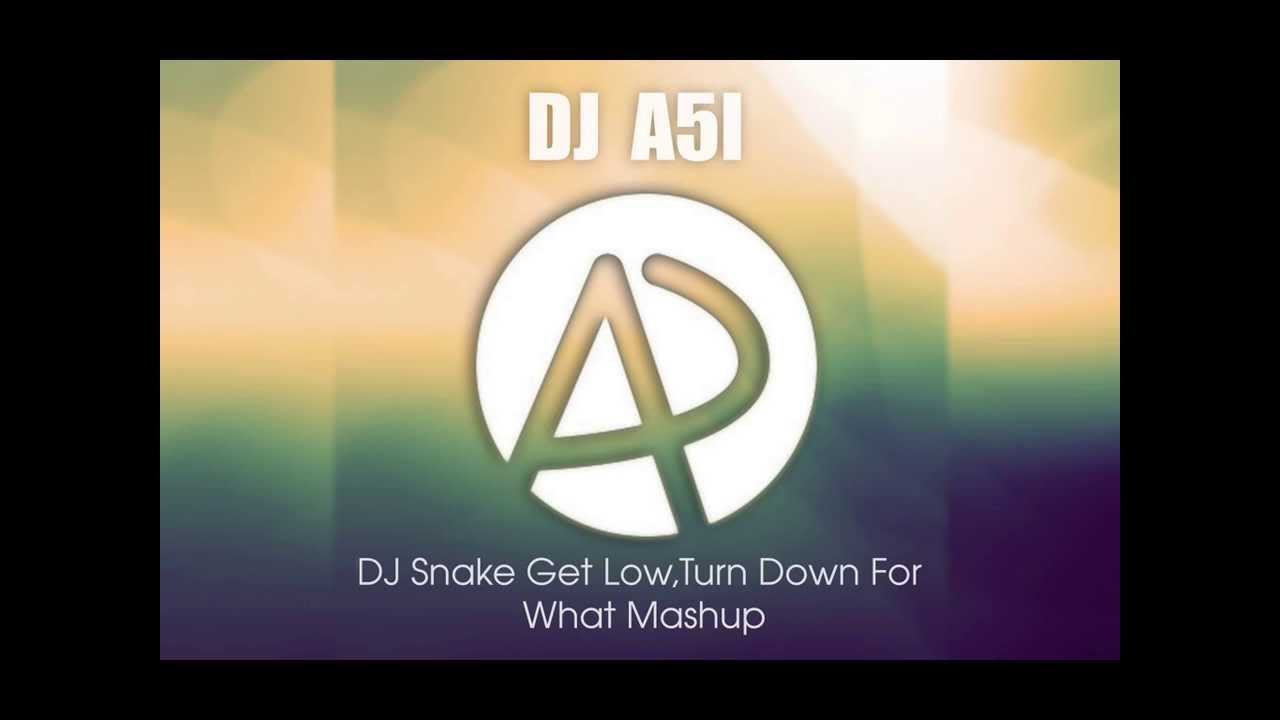 DJ Snake Get Low Vs Turn Down For What Mashup(DJ A51