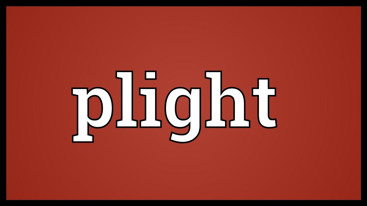 Download Plight Meaning