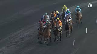 Vidéo de la course PMU PRIX DE DRAGUIGNAN
