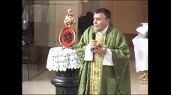 ¿Qué significa el Matrimonio Católico? - P. Santiago Martin (FM)