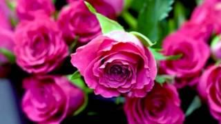 Mere Ghulam Tera [Full Song] (HD) - Laadla
