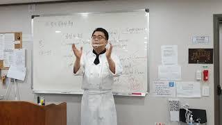 천연발효빵 이론강의 _ 종의 종류와 특성