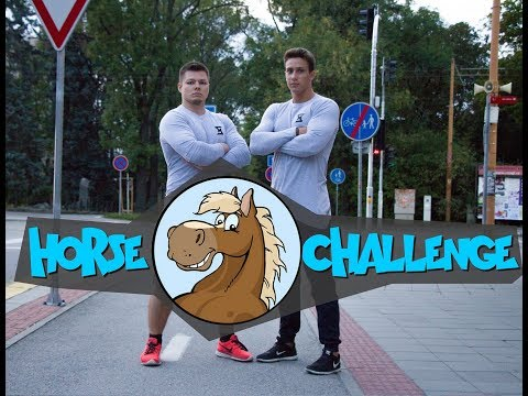 Parkour Horse Challenge FREDY VS. MARTIN - JIHLAVA